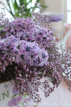Lilac and babys breath bouquet Amazing Flowers, Purple Flowers, Beautiful Flowers, Beautiful Things, Wedding Bouquets, Wedding Flowers, Wedding Centrepieces, Dream Garden, Home And Garden