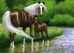 IN THE SPARKLING SUMMER STREAM Art Drawings For Kids, Horse Drawings, Animal Drawings, Beautiful Horse Pictures, Beautiful Horses, Mural Painting, Artist Painting, Paintings, Horse Artwork
