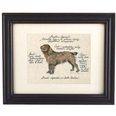 "Boykin Spaniel Dog Print | Ballard Designs ""Friendly, eager to please, lively, exceptional companion."""