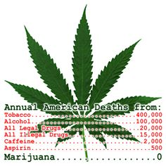 It's not far-fetched to suggest a combination of financial need and the Obama administration's benign neglect could make California the first state to legalize recreational use of marijuana next year. Description from cannabisni.com. I searched for this on bing.com/images
