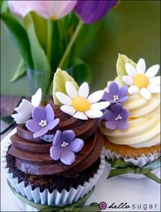 Chocolate & Vanilla Cupcakes with White Daisies and Purple Forget-Me-Nots Pretty Cupcakes, Beautiful Cupcakes, Flower Cupcakes, Yummy Cupcakes, Spring Cupcakes, Yellow Cupcakes, Vanilla Cupcakes, Cupcake Art, Cupcake Cookies