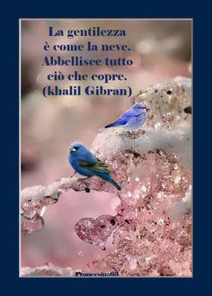 World International Days, Italian Greetings, Desiderata, Inspirational Phrases, Spiritual Quotes, Einstein, Behavior, My Life, Spirituality