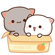 Cute Anime Cat, Cute Bunny Cartoon, Cute Cartoon Images, Cute Kawaii Animals, Cute Cat Gif, Cute Cartoon Wallpapers, Cute Cats, Cute Bear Drawings, Cute Animal Drawings Kawaii