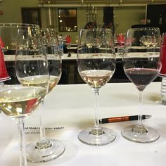 Time for this morning's class- 6 wines from #puechhaut excited