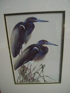"""Lot of 2 Bird Themed Prints by Art Lamay in 16 x 13"""" Wooden Frames A12 