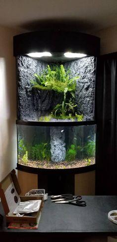15 best aquarium lighting images aquariums diy led aquarium led