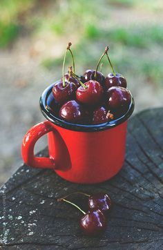 Sweet cherries in red mug by Emoke Szabo www.mannafromdevon.com
