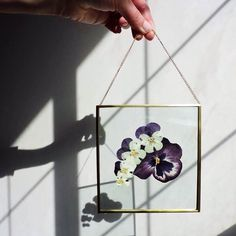 Petal and Fern. Pressed flowers in handmade floating frame/wall hanging! Petal and Fern. Pressed Flowers Frame, Pressed Flower Art, Flower Frame, Floating Flowers, Floating Frame, Big Flowers, Dried Flowers, Crafts To Do, Diy Crafts