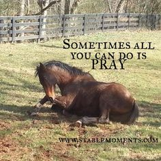 Even when you're in over your head you can pray! #faith #foster #adoption #horsetherapy