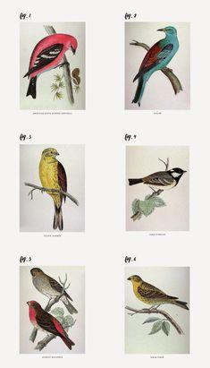Poppytalk: Spring Makeover   6 Free Wall Art Printables