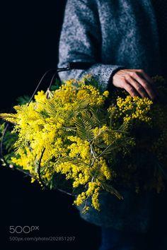 Flowers by RaquelCarmonaRomero