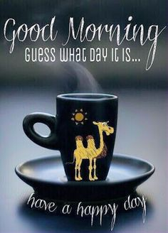 Good Morning Guess What Day It Is quotes quote good morning  happy camel