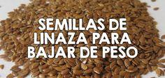 Semillas de linaza para bajar de peso  http://nutricionysaludyg.com/nutricion/linaza-lino-para-bajar-de-peso/