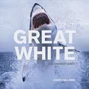 APEX Predators (hosted by my favorite shark expert: Chris Fallows): premier shark diving/photography in South Africa=my dream bucket list activity!