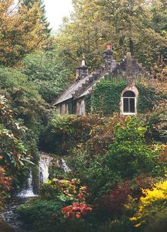 Idyllic English Country Villages Country cottage in the Forest Cottage In The Woods, Cozy Cottage, Garden Cottage, Cottage Homes, House In The Forest, Forest Home, Future House, Beautiful Homes, Beautiful Places