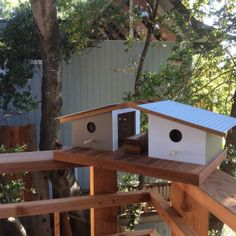 Sourgrass-Mid-Century-Bird-Houses-5 | Bird houses and Mid century