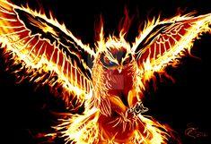 Living on Fire by Draikairion.deviantart.com on @DeviantArt