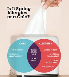 Find out if those sniffles are sign of spring allergies.