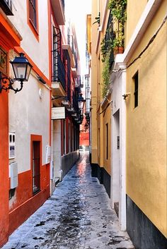 Sevilla, Spain. A tiny city filled with traditional Spanish culture..... Plan to stay in this barrio of sevilla