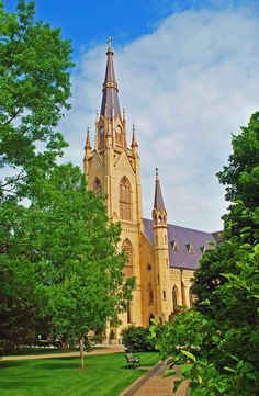 Basilica of the Sacred Heart at Notre Dame University, South Bend, Indiana #Indiana