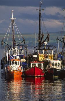 Fishing Boats in Greencastle Harbour, Inishowen, Co. Donegal