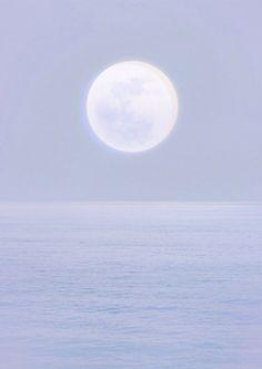 Moonlight - 月光