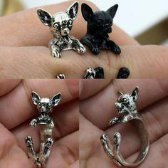 Cute chihuahua rings!