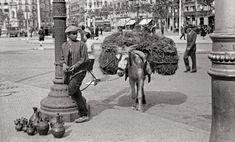 Adolf Zerkowitz - Plaza Catalunya - Vendedor ambulante