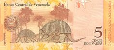 (Reverso). Billete del Banco Central de Venezuela. 5 Bolívares Fuerte. Fecha Diciembre 19 2008. Serie Z8.