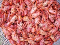 Crawfish..! (Yep I'm from Louisana and I eat mud bugs)
