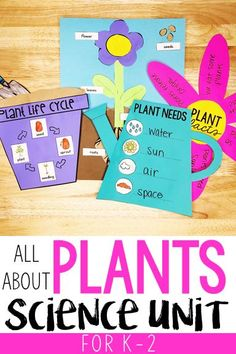 Plants Unit: All About Plants, the Plant Life Cycle, and Plant Needs - Kindergarten Plant Experiments, Plant Science, Science Experiments Kids, Science For Kids, Science Ideas, Science Lessons, Kindergarten Lesson Plans, Kindergarten Learning, Kindergarten Activities