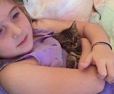 """OMG  ♡♡♡  A 5-year-old girl helped save a tiny tabby kitten who was found on the road. They have been inseparable since. Meet Cyborg the kitten!Courtesy: Laney Van Antwerp-Nava""""A friend called me Friday night to let me know that there was what she believed to be a newborn kitten whose eyes weren't even open y..."""