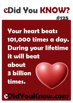 Your heart beats times a day. During your lifetime it will beat about 3 billion times. Take care of it! Wow Facts, Wtf Fun Facts, True Facts, Random Facts, Crazy Facts, Interesting Facts About World, Interesting Information, Amazing Facts, The More You Know