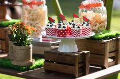 produção_bella_fiore_picnic_jardinagem_festa_crianças_ferias_comidas_decoração_cupcakes