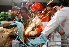 Bombeiro – com auxílio de voluntários e médicos – serra barras de aço presas ao corpo de operário após acidente de trabalho, na China. Fotografia: China Daily/Reuters, 2012.Essa incrível imagem foi propagada pela imprensa internacional no ano de 2012, sendo considerada uma das mais incríveis fotografias daquele ano. Trata-se das medidas tomadas após um acidente de trabalho ocorrido em uma fábrica na cidade de Shuangxi, na província de Fujian, na China.