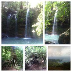 #forest #jungle #waterfalls #adventure
