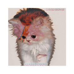 Kitten Cover - David Bowie