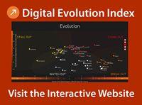 Visit the DEI Interactive Website