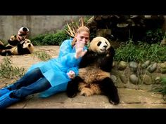 volunteer at a panda reserve center in China