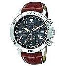 Citizen Titanium Perpetual Calendar Watch BL5250-02L