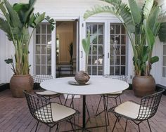 Patio Outdoor Plants In Pots Design, Pictures, Remodel, Decor and Ideas - page 2