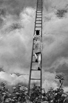So you take a picture of something you see In the future where will I be? You can climb a ladder up to the sun ...  • Coldplay