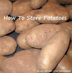 How do you store potatoes? As a former potato farmer, I'll tell you how we stored them. (Paper or cotton bag or slatted wooden box. Fresh Vegetables, Fruits And Veggies, How To Store Potatoes, Storing Potatoes, Potato Storage, Vinegar Uses, Vegetable Storage, Bountiful Harvest, Canning Recipes