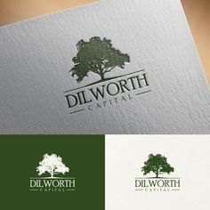 Dilworth Capital - Logo incorporating a willow oak tree for Dilworth Capital