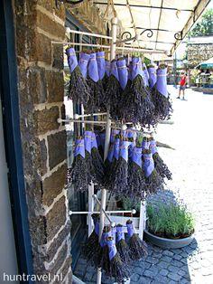 Lavendel in Tihany aan het Balatonmeer in Hongarije.