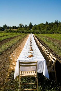 A Documentary Team From The New School Traveled With Alumni To - Seattle farm to table