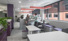 GDP's new office design was inspired by how minds and bodies respond to being in or around nature. Biophilic design was incorporated into this office space with live plants bordering the desks and pebble patterned carpet. The eggplant/purple wall paint is a complementing color to the greenery.