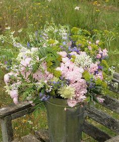 Babylon Flowers: seasonal, british grown flowers