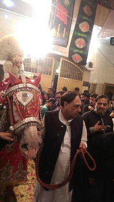 Shabih-e-Zuljinah - Porani Anarkali Lahore (27 Muharram 1438 / 2016 - Porani Anarkal Lahore) Rasala Bazar Porani Anarkal Lahore Photography: Syed Zain Bukhari Shia Multimedia Team - SMT http://ift.tt/1L35z55