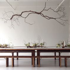 Ohhh...if only I could figure out a way to do that branch chandelier...